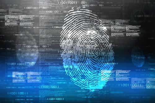 Protecting Yourself from Data Breaches and Identity Thieves