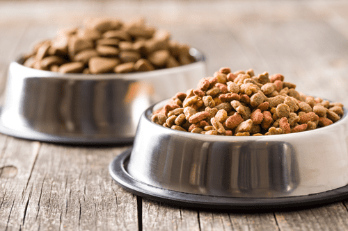 FDA Issues Warning To Pet Food Company Over Deadly Violations